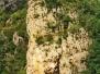 CASTELLAR DEL RIU, Sant Llorenç dels Porxos, S-XII-XIII